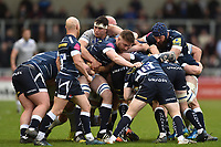 Forwards in action at a maul. Aviva Premiership match, between Sale Sharks and Bath Rugby on May 6, 2017 at the AJ Bell Stadium in Manchester, England. Photo by: Patrick Khachfe / Onside Images