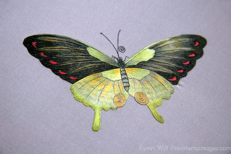 Asia, China, Suzhou. Silk embroidery detail of a butterfly.