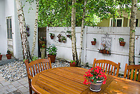 Backyard shaded patio with pretty wood table and chairs, privacy fence, containers hanging, stones, white birch Betula trees