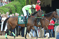 HOT SPRINGS, AR - APRIL 15: Conquest Mo Money #11, with jockey Jorge Carreno aboard before the running of the Arkansas Derby at Oaklawn Park on April 15, 2017 in Hot Springs, Arkansas. (Photo by Justin Manning/Eclipse Sportswire/Getty Images)