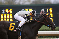 HOT SPRINGS, AR - March 11: It Tiz Well #6, with jockey Corey Nakatani up, wins the Honeybee Stakes at Oaklawn Park on March 11, 2017 in Hot Springs, AR. (Photo by Ciara Bowen/Eclipse Sportswire/Getty Images)