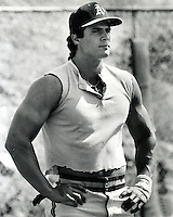 Jose Canseco, Oakland A's outfielder.(photo copyright 1988 Ron Riesterer)