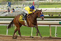 ARCADIA, CA  FEBRUARY 11: #6 Vale Dori, ridden by Mike Smith, in the stretch of the Santa Maria Stakes (Grade ll) on February 11, 2017 at Santa Anita Park in Arcadia, CA. (Photo by Casey Phillips/Eclipse Sportswire/Getty Images)