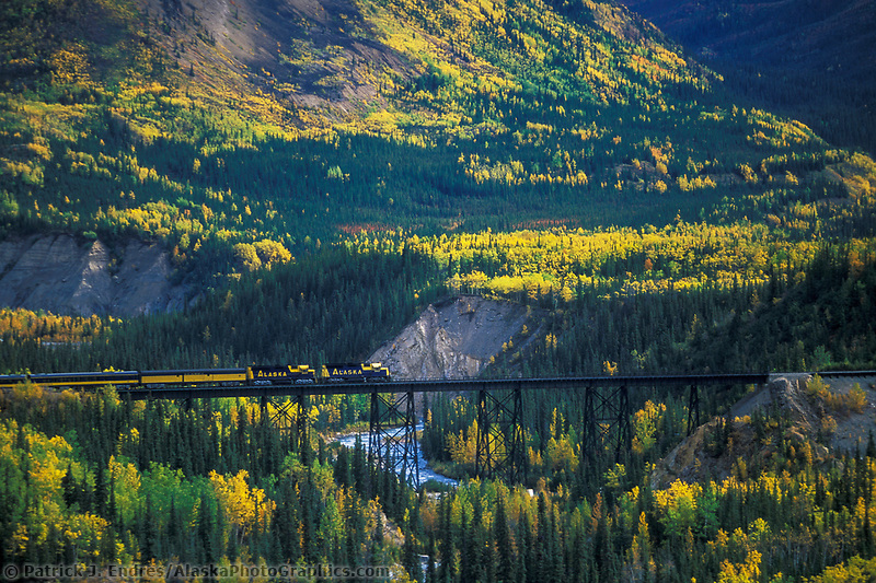 Alaska Railroad passenger train travels across the trestle in Denali park in autumn, interior, Alaska