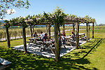 New Zealand, South Island, Marlborough, winery touring, tasting, and vineyards at Wairau Rivery Winery  Sauvignon Blanc and Pinot Noir wine. Photo copyright Lee Foster. Photo #126477