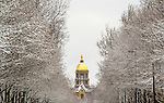 Barbara Johnston/University of Notre Dame by Barbara Johnston/University of Notre Dame