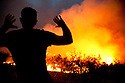 A farmer and volunteer fire fighter raises his hands in despair as he sees the flames of a wild fire finally engulf his olive grove after hours of effort in trying to extinguish the flames;