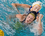 Michigan Water Polo