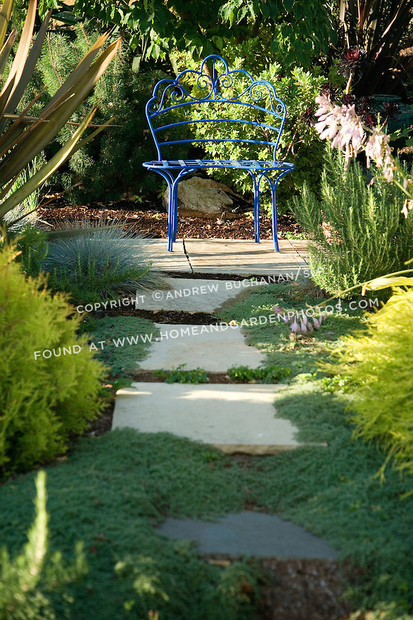 large flagstone steps lead through a Mediterranean style garden of New Zealand flax, Spanish lavender, shrub cypress, creeping thyme, and other sun-lovers to reach a small blue pained metal garden bench tucked under the shade of a small tree; Sue Tong