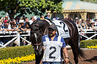 ARCADIA, CA APRIL 8:  #2 It Tiz Well in the paddock before the Santa Anita Oaks (Grade 1) on April 8, 2017 at Santa Anita Park in Arcadia, CA (Photo by Casey Phillips/Eclipse Sportswire/Getty Images)