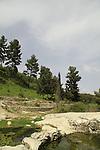 Ein Nevoraya in Biria Forest