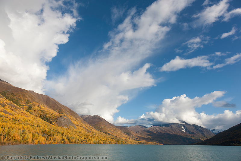 Autumn foliage, Eklutna lake, Eklutna lake state park, just north of Anchorage, Alaska.