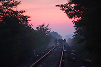 Illegal migrants walk on local railway tracks in the dawn just after crossing the border between Hungary and Serbia near Roszke (about 174 km South of capital city Budapest), Hungary on August 30, 2015. ATTILA VOLGYI