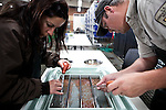 Fish biologist Melissa Conte, left, and David Miller, right, cull dead trout eggs at the US Fish & Wildlife Lahontan National Fish Hatchery Complex in Gardnerville, Nevada, April 18, 2013.
