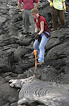 Dr. Jeffrey Keith Lava research on the Big Island of Hawaii....Photography by Mark A. Philbrick