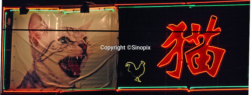 A large picture of a cat and a neon sign hangs over The King of Cat Restaurant in Guangzhou, China.
