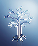 Digital tree made of electronic circuits, conceptual illustration on blue background
