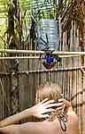 A young woman take a shower using water filtered through a coconut, on Isla Pelikano, San Blas Islands, Kuna Yala, Panama
