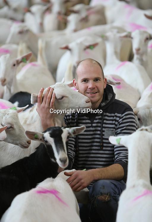 Foto: VidiPhoto<br /> <br /> GENDT - Portret van melkgeitenhouder Leeke Bouwens uit Gendt tussen zijn melkgeiten.