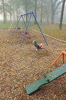 Neighborhood childrens playgound with see saw and youth swings.