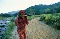 Woman farmers on a rice field in Gorkha province..-The full text reportage is available on request in Word format