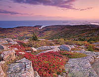 The description for Acadia Sunset will go here.