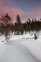 """Alder Creek Sunset 2"" - Photograph of a sunset at an iced over Alder Creek in the Tahoe Donner area of Truckee, California."