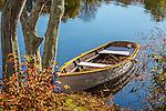 Fall foliage at Shawmee Pond in Sandwich, Cape Cod, Massachusetts, USA