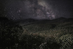 A night in the Shenandoah National Park, Virginia, USA