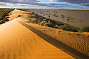 Australia, Queensland, Simpson Desert; red sand dune next to flooded desert pan