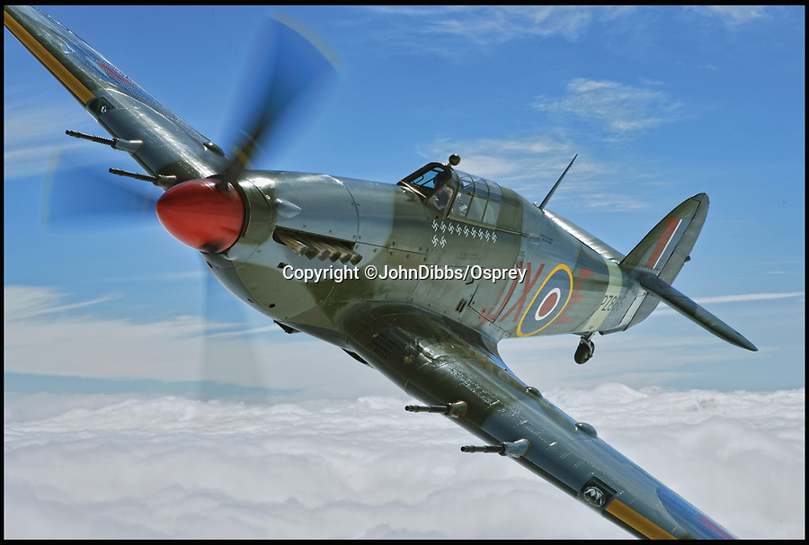 BNPS.co.uk (01202 558833)<br /> Pic: JohnDibbs/Osprey/BNPS<br /> <br /> Hurricane Mk IIC PZ 865 above the clouds.<br /> <br /> Last of the Few - A photographer's stunning new book is a tribute to the last Hawker Hurricane's - the true workhorse of the Battle of Britain.<br /> <br /> Only 13 WW2 Hurricanes are still airworthy today, compared to over 60 of their more glamorous counterpart the Spitfire.<br /> <br /> But during the Battle of Britain there were in fact twice as many Hurricane's as Spitfires taking on Hitlers Luftwaffe in the skies over southern England.<br /> <br /> The Hurricane may be viewed as less glamorous than the Spitfire, but these stunning photographs reveal just how majestic it was in full flight.<br /> <br /> Photographer John Dibbs has got up close and personal to the legendary fighter planes in order to capture them like never before.<br /> <br /> His 10 year quest for surviving Hurricanes took him all over the world and he photographed them in England, France, the United States and New Zealand.<br /> <br /> Using the skill and experience of highly experienced RAF and civilian pilots, Mr Dibbs was able to fly to within 15ft of some of the last remaining Hurricanes - with breath-taking results.<br /> <br /> There was a fair degree of skill involved as he took the photos from the canopy of a Second World War trainer aircraft which was travelling at 200mph while confronting wind blast.<br /> <br /> The thrilling photos were taken for an a definitive history of the Hurricane which is told by Mr Dibbs and aviation historians Tony Holmes and Gordon Riley in their new book Hurricane, Hawker's Fighter Legend.