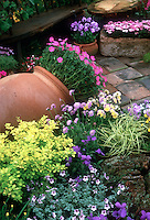 Colorful container garden on brick patio, tree trunk wooden round bench on planter seat, terracotta pots, ferns, ornamental grass, Geraniums, mixed flowers in pots, wooden garden bench