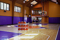 Home Basketball Court With Natural Lighting