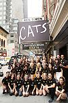 New Generation of 'CATS' Portrait