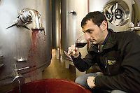 "Switzerland. Canton Ticino. Ligornetto. Firm ""Vinattieri Ticinesi"". Wine growing and producing. Coming out of the inox fermenting tuns, the last harvested grapes produce a 2007 red Merlot wine which needs to be oxygenated. Danilo Montanaro, oenologist, is smelling with his nose and tasting a 2007 Merlot red wine. Wineglass. © 2008 Didier Ruef"