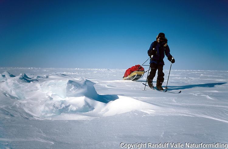 Mann trekker pulk over sjøis. --- Man pulling sled across sea ice.