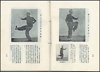 Bruce Lee's Kung fu handbook.