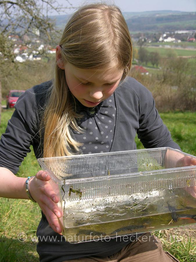 Tuempel aquarium naturfoto frank hecker for Wassertiere teich