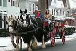 TORRINGTON, CT - 2 January, 2009 - 010209MO02 -  Ken Wood, left, owner of Wood Acres Farm in Terryville, and his son, Dan, gave rides in this carraige pulled by an American Cream and English Shire (right) during Torrington's Last Night celebration held Friday due to inclement weather on New Year's Eve. Jim Moore Republican-American.