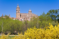 Catedral from south, Salamanca, Spain