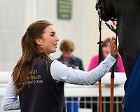 A pat on the neck for White Chocolate from the stable lass in the winners enclosure during Afternoon Racing at Salisbury Racecourse on 18th May 2017