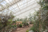Hothouse at the Botanical Gardens, Aarhus, Denmark. Architect: C. F. Møller. Engineer: Søren Jensen