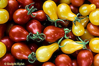 HS09-169x  Tomato - red and yellow pear varieties