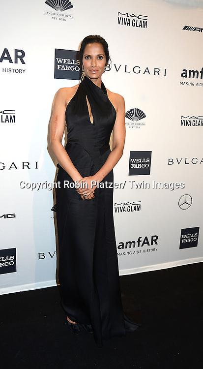 Padma Lakshmi attends the amfAR New York Gala on February 5, 2014 at Cipriani Wall Street in New York City.