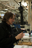 Scientist observing zooplankton (copepods) on a research ship, Bering Sea