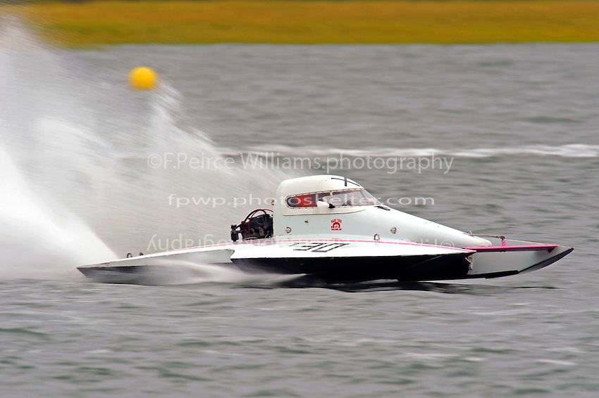 T-30 (1.5 Litre Stock hydroplane(s)
