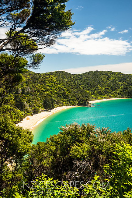 Anatakapau Bay with Mutton Cove as seen through native kanuka bush on Abel Tasman Coast Track, Abel Tasman National Park, Nelson Region, South Island, New Zealand, NZ