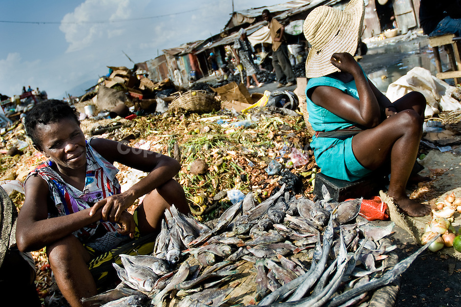 I need information about poverty in haiti for an essay.?