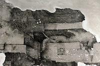 Milano, Castello Sforzesco, La Sala delle Asse riapre per EXPO 2015 e presenta &ldquo;il Leonardo ritrovato&rdquo;. Lavori di restauro per il recupero del monocromo e nuove tracce di disegni attribuibili a Leonardo. Il Monocromo, frammento con radici d&rsquo;alberi e rocce scoperto alla met&agrave; degli anni &lsquo;50.<br /> Milan, Castello Sforzesco, La Sala delle Asse reopens for EXPO 2015 and presents &quot;the rediscovered Leonardo &quot;. Restoration works for the recovery of the monochrome and new traces of drawings attributed to Leonardo.