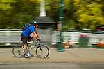 Cyclist riding through downtown Christchurch, New Zealand